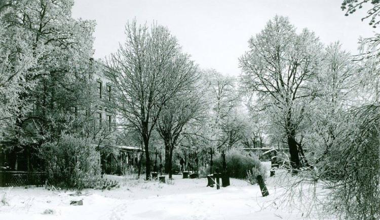 DRBNA HISTORIČKA: Starý jihlavský hřbitov stával nad dnešním zimákem ve Smetanových sadech