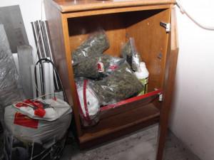 Zadržená marihuana během domovní prohlídky