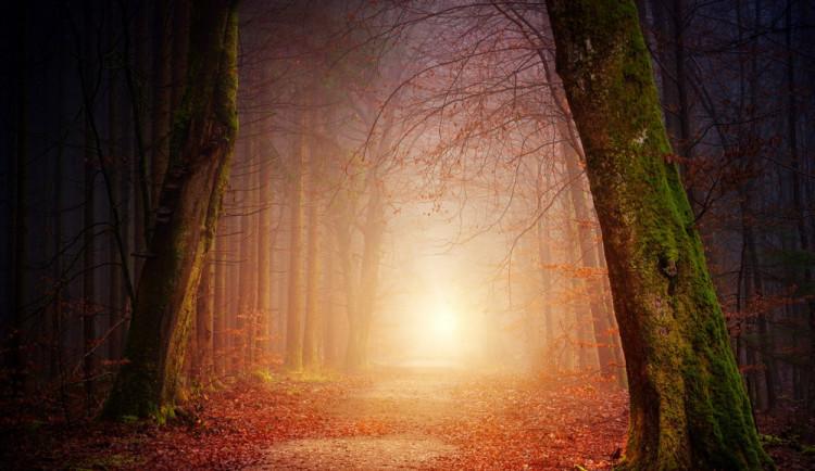 POČASÍ NA ÚTERÝ: Ráno s mlhami, přes den může mrholit. Teploměr ukáže až 16 stupňů