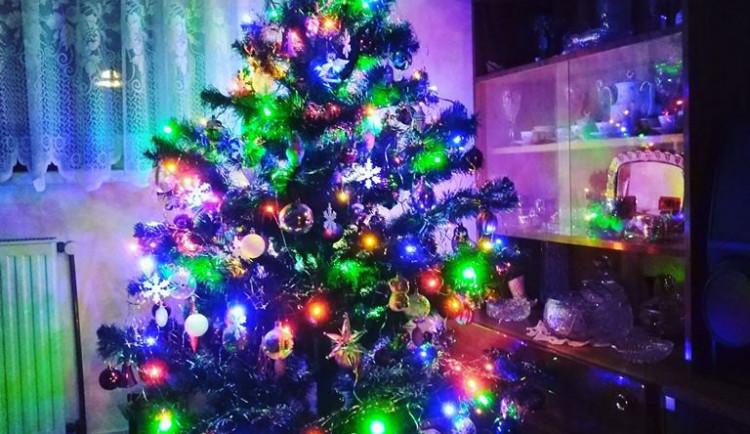 Vánoční stromečky 2017