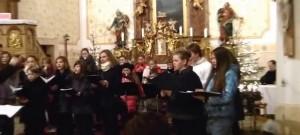 Vánoční koncert v kostele sv. Máří Magdalény v Dolní Cerekvi I.